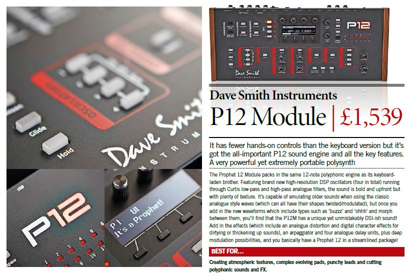 Dave Smith Instruments - P12 Module